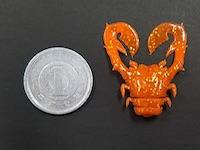 "ChinuCrab 1"""